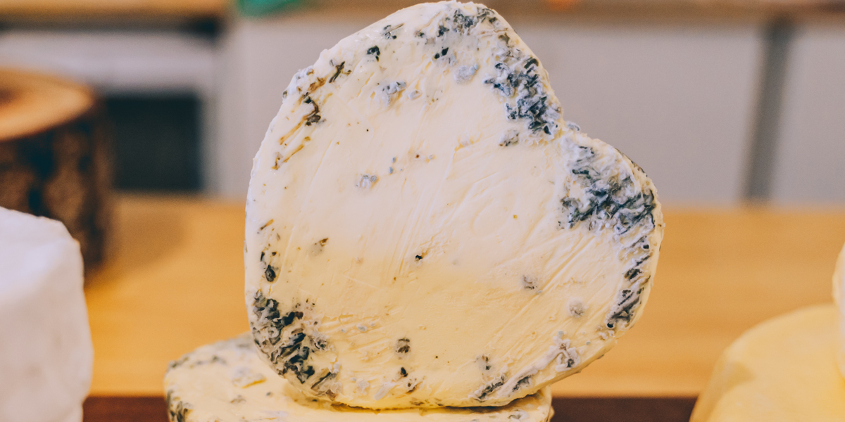 Cheese and mold
